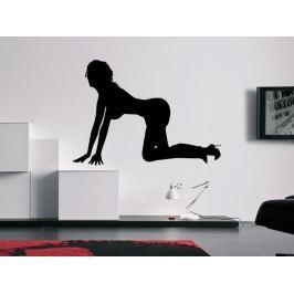 Samolepka na zeď Sexy tanečnice 004