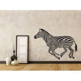 Samolepka na zeď Zebra 001