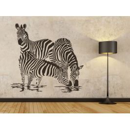 Samolepka na zeď Zebra 003