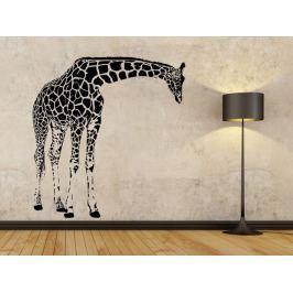Samolepka na zeď Žirafa 004