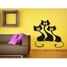 Samolepka na zeď Kočička 007