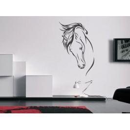 Samolepka na zeď Kůň 022