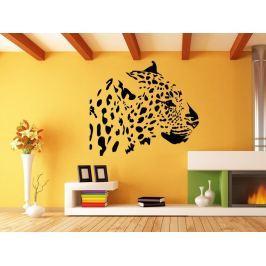 Samolepka na zeď Leopard 005