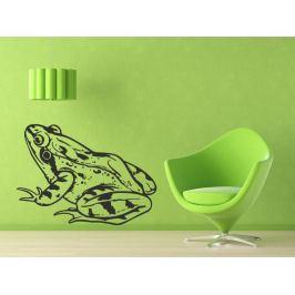Samolepka na zeď Žába 008