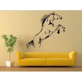 Samolepka na zeď Kůň 0380