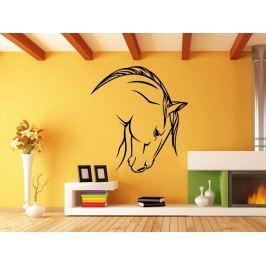 Samolepka na zeď Kůň 0397