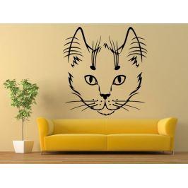 Samolepka na zeď Kočka 0463
