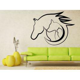 Samolepka na zeď Kočka, pes s kůň 0565