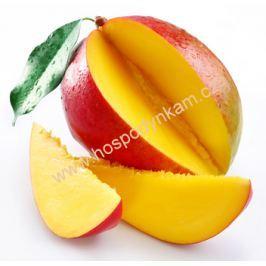 Ztužovač šlehačky Lilly mango 100g