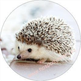 Jedlý papír ježek
