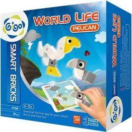 World Life - Pelikán