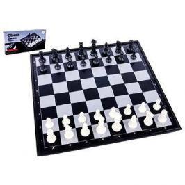 Šachy magnetické