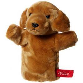 Hamleys Zlatý labrador