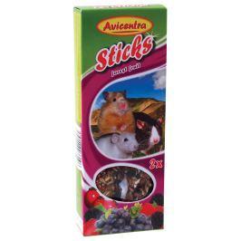 Tyčinky AVICENTRA s lesním ovocem pro malé hlodavce 2ks
