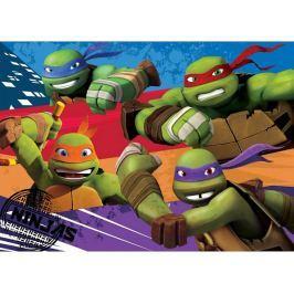 Dětský koberec Turtles Želvy Ninjas 02 Ninjas Turtles