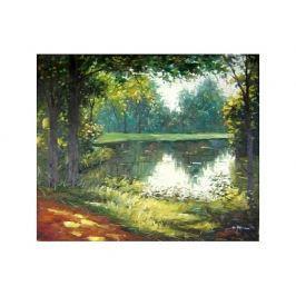 Obraz - Pohádkový les