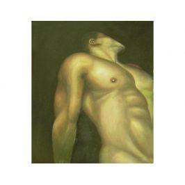Obraz - Muž