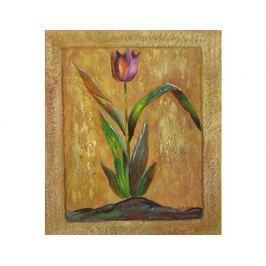Obraz - Luční tulipán