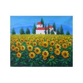 Obraz - Slunečnicové pole s chalupou