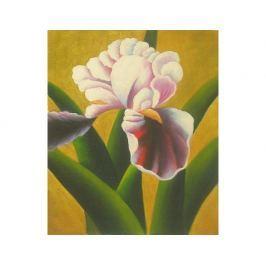 Obraz - Detail květu