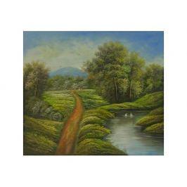 Obraz - Cesta podél řeky