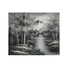 Obraz - Černobílý Neverland