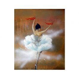 Obraz - Divá baletka