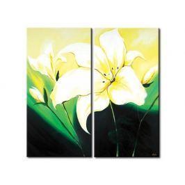 Obrazový set - Květy Lilie