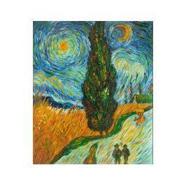 Obraz - Hvězdná noc I