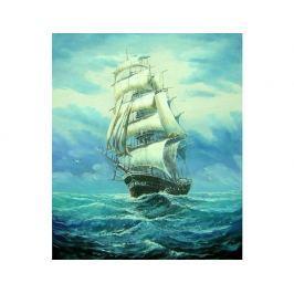 Obraz - Plachetnice na moři 2