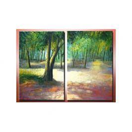 Obrazový set - V lese