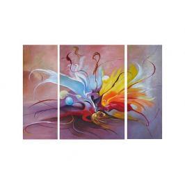 Obrazový set - Orchidej